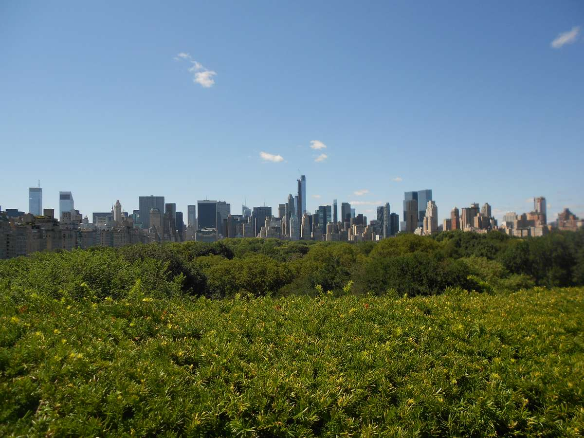 Top 10 New York City for the Beginners - Museums and Astonishing Views