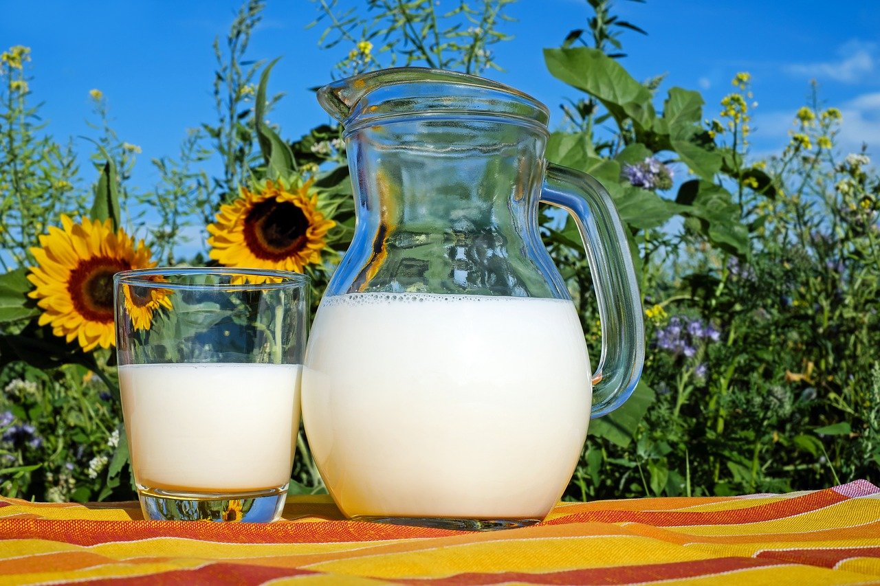 Top 10 Unusual Milk And Milk-based Drinks That You Might Like